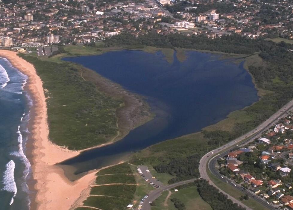 Dee Why Lagoon Biodiversity Restoration